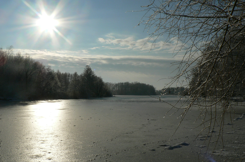 Winter an der Spree